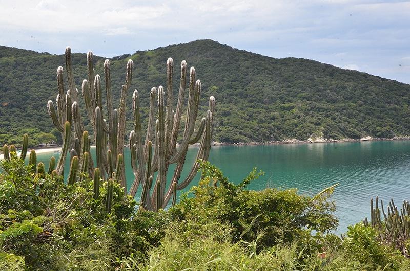 Prais do Rio de Janeiro Arraial do Cabo