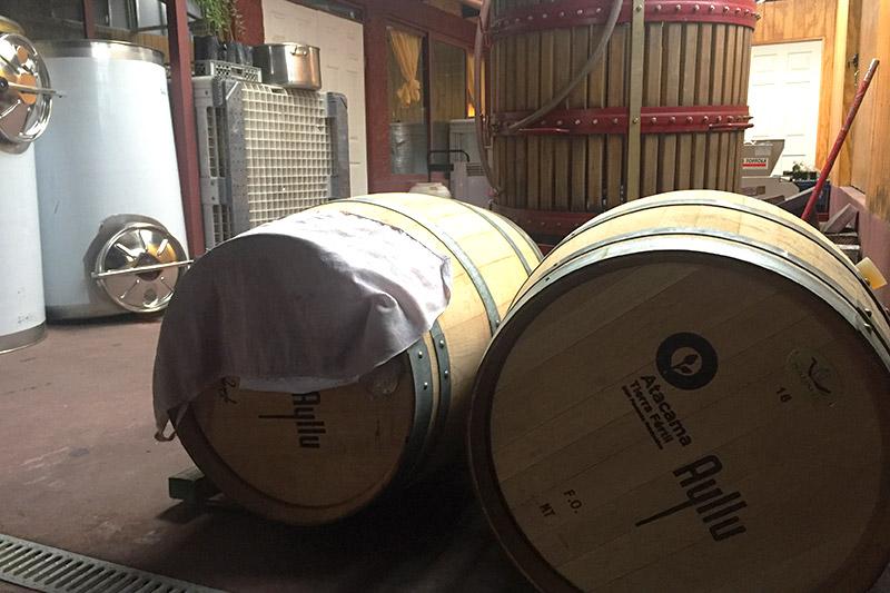 Tour do vinho Ayllu