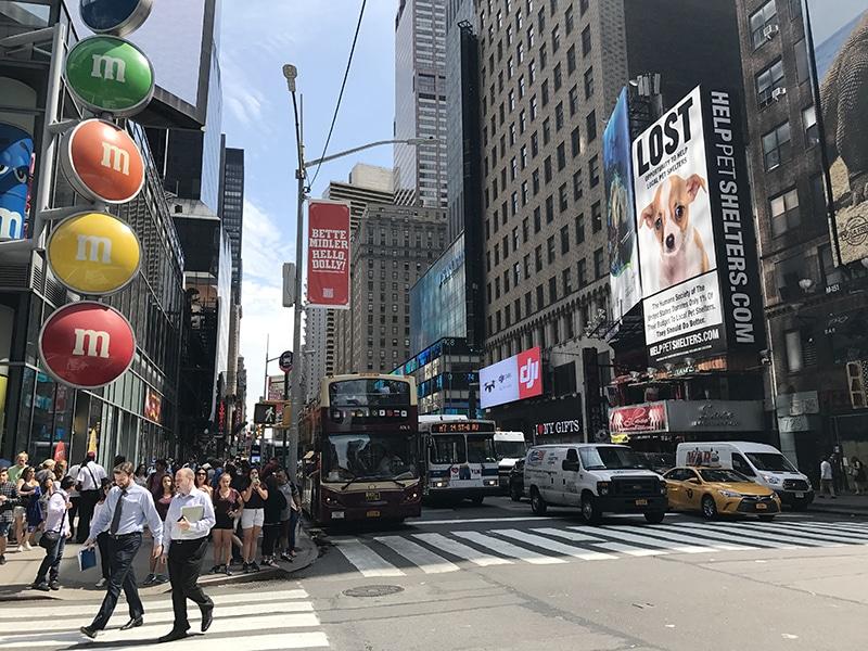 Ônibus turísticos em Nova York