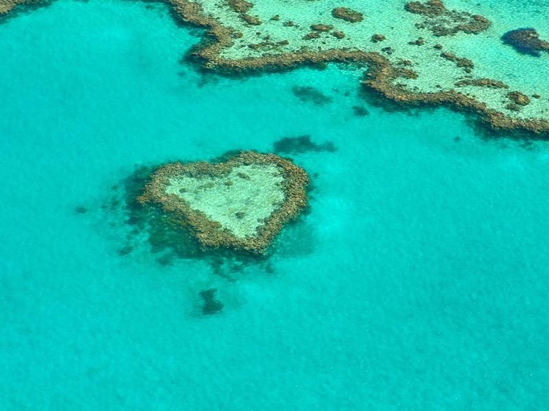 Curiosidades interessantes sobre a Austrália