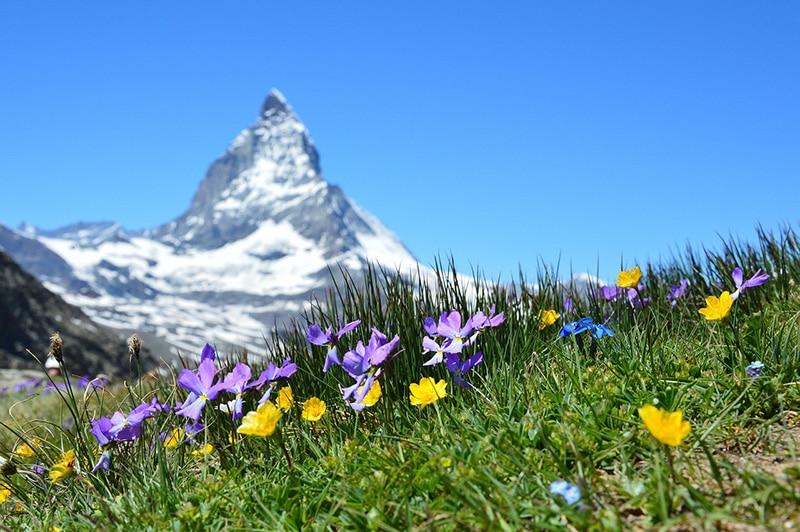 Dicas de lugares para visitar na Suíça