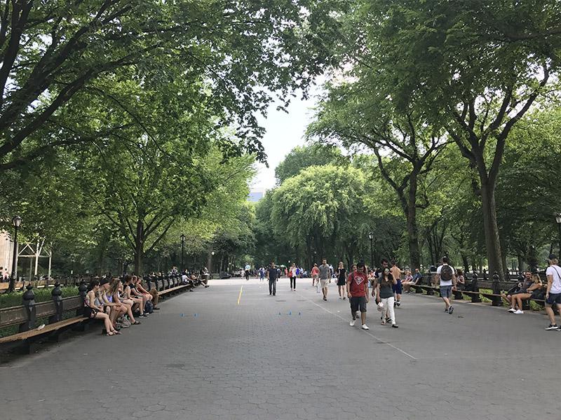 Parque mais famoso de NY
