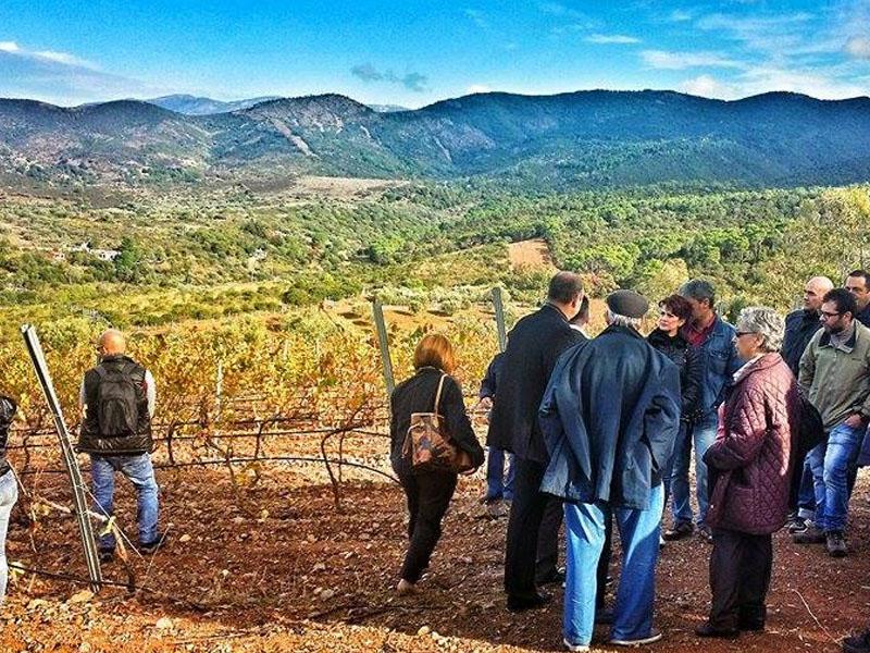 O que fazer de acordo com o clima na Sardenha