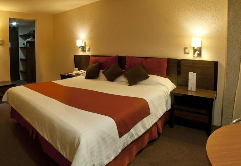 Dicas de hotéis bem avaliados em San Luis Potosí