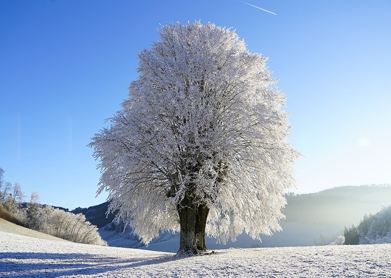 Quando é inverno na Suíça