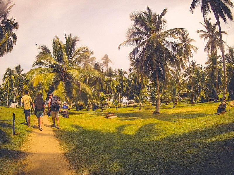Parque Tayrona Como Chegar