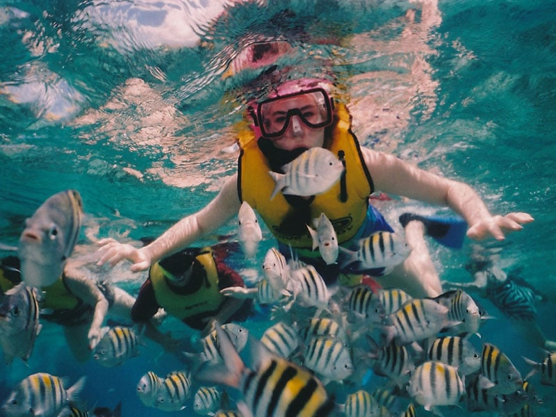 Dicas de atividades nas principais praias de Cancún