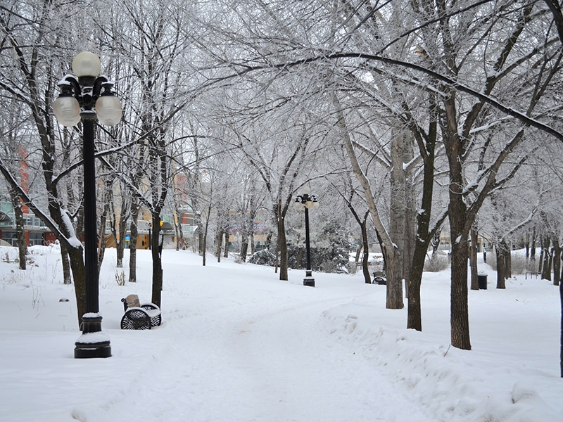 esportes inverno canadá