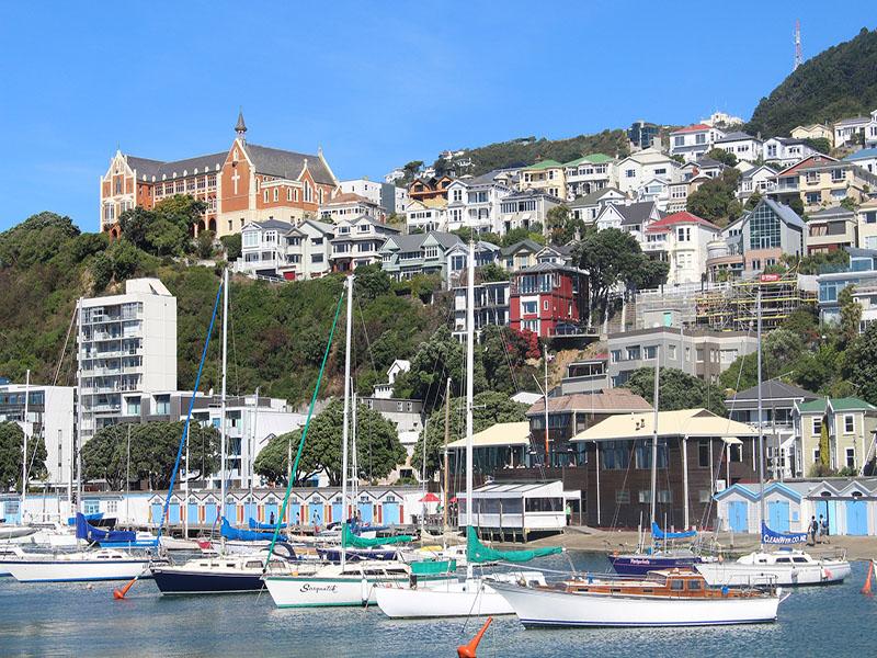 Dicas de viagem em Wellington