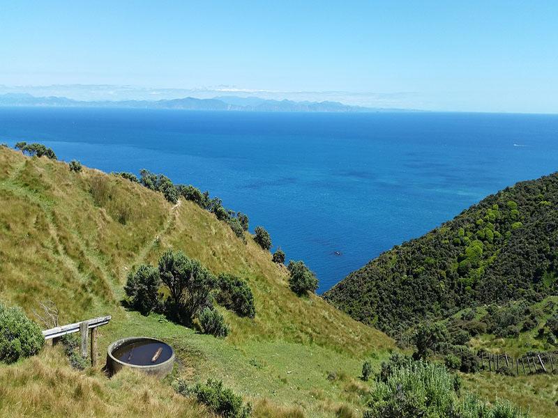 Dicas de passeios em Wellington