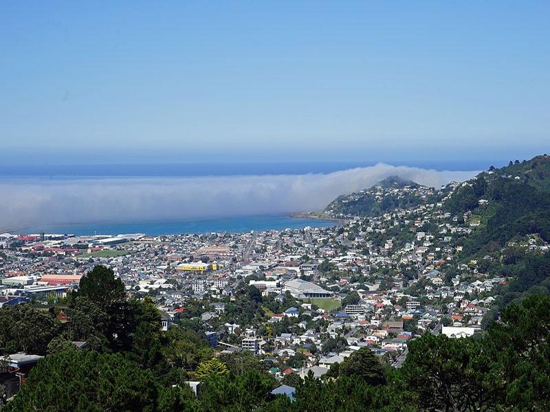 Turismo em Wellington