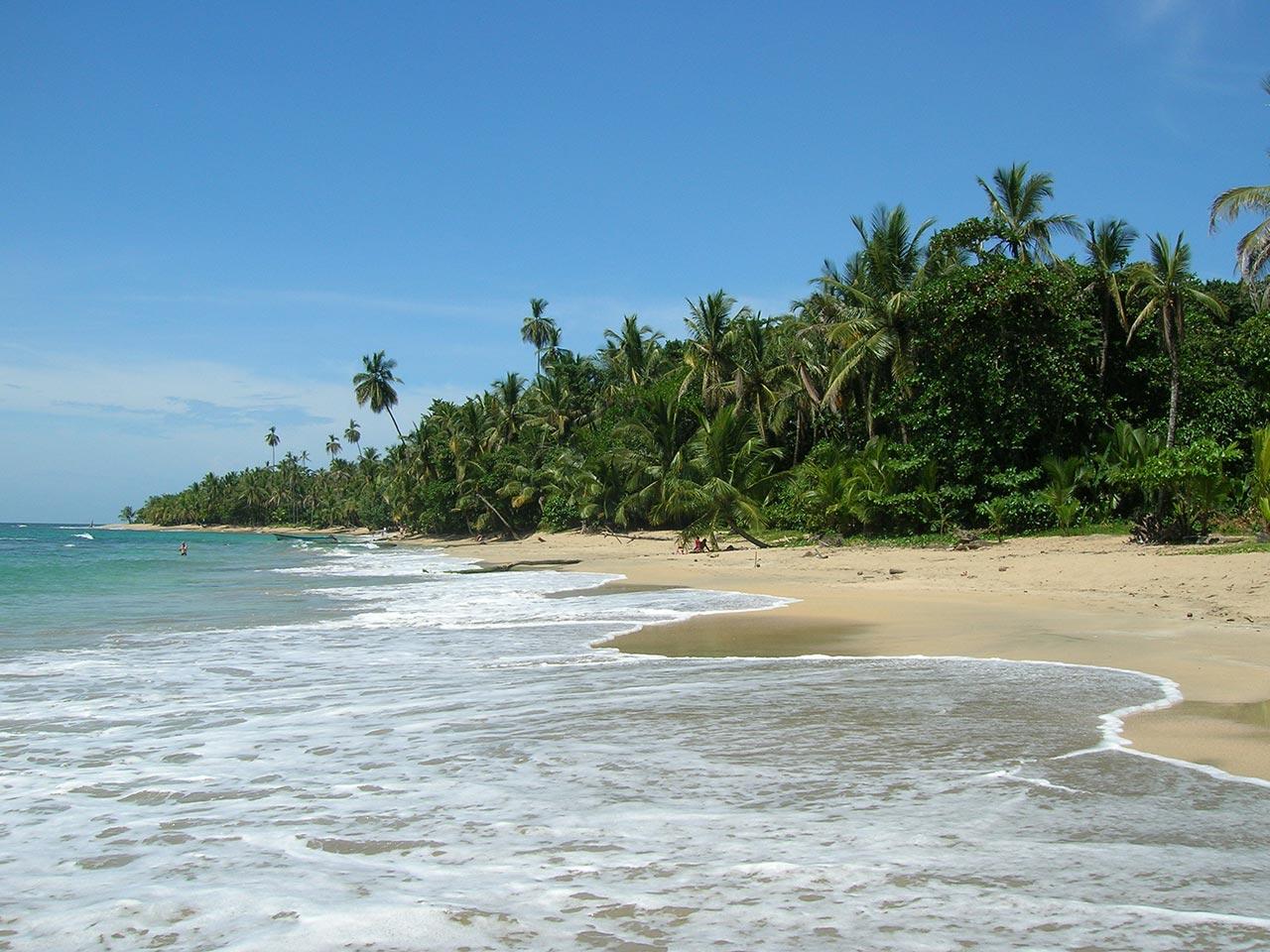Qual a melhor praia de preservação ambiental do mundo?