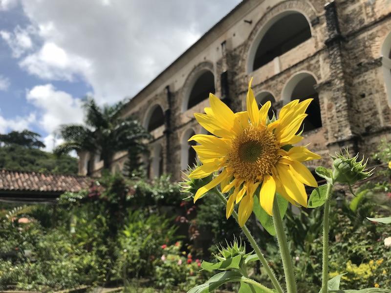Lugares bonitos no Ceará