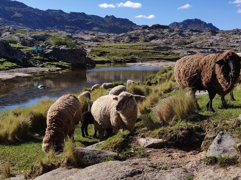 Turismo religioso na Argentina