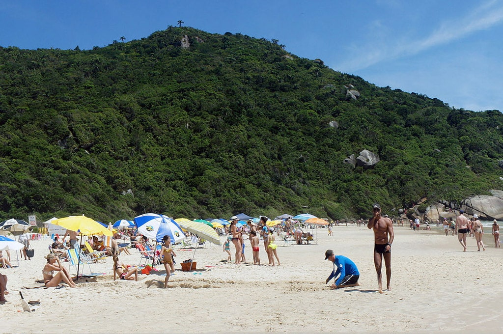praia brava Florianópolis