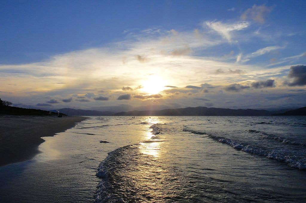 Praia da Daniela Florianópolis