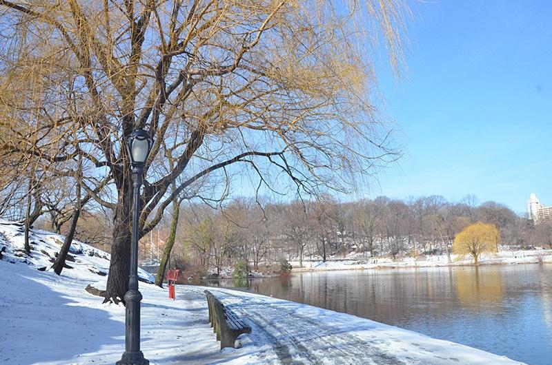 O que fazer no inverno de Nova York