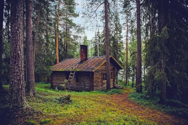 Finlândia características