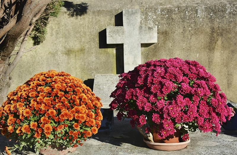 Dia dos Mortos na França