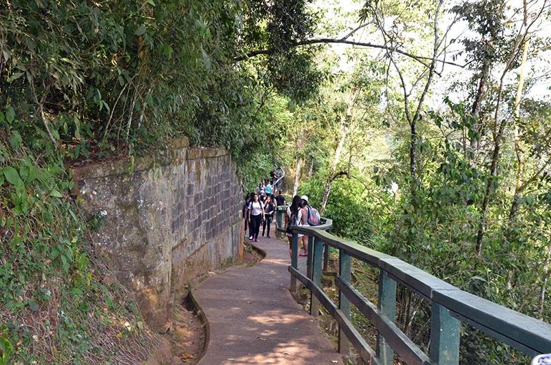 descobrindo o lado brasileiro das cataratas