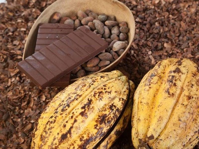 Chocolate no Equador