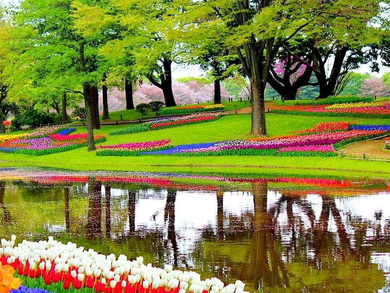 Lugares mais bonitos da Holanda