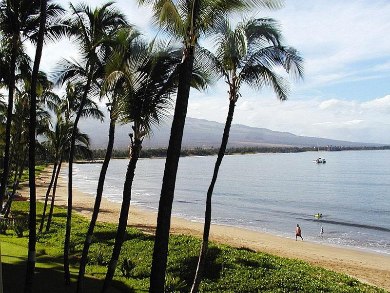 Dicas de Maui