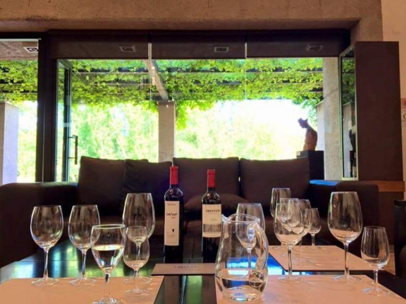 Tour de vinho em Mendoza