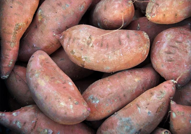 Curiosidades sobre a batata na França