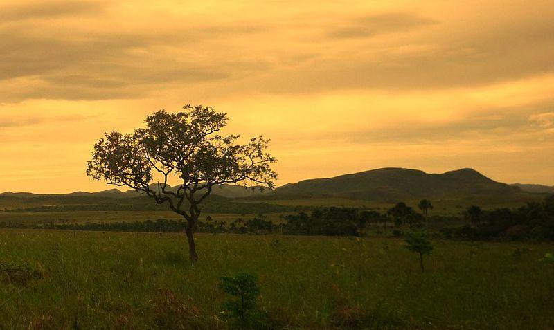 Lugares curiosos no Brasil