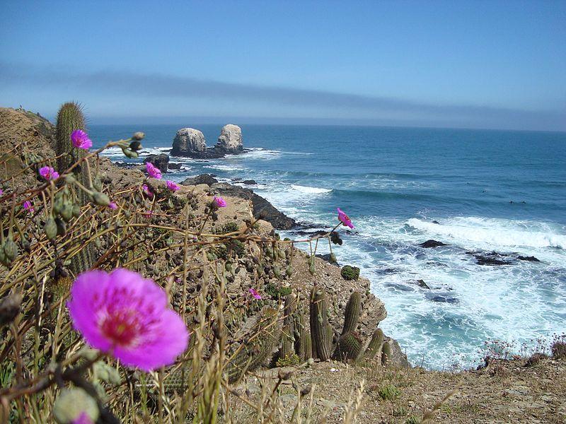 Pichilemu é a cidade do surf no Chile