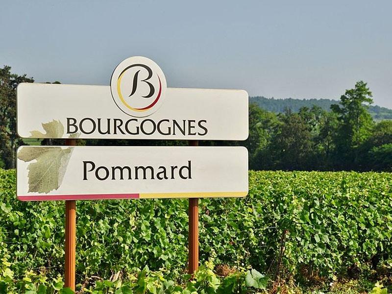 Melhores vinhos da França