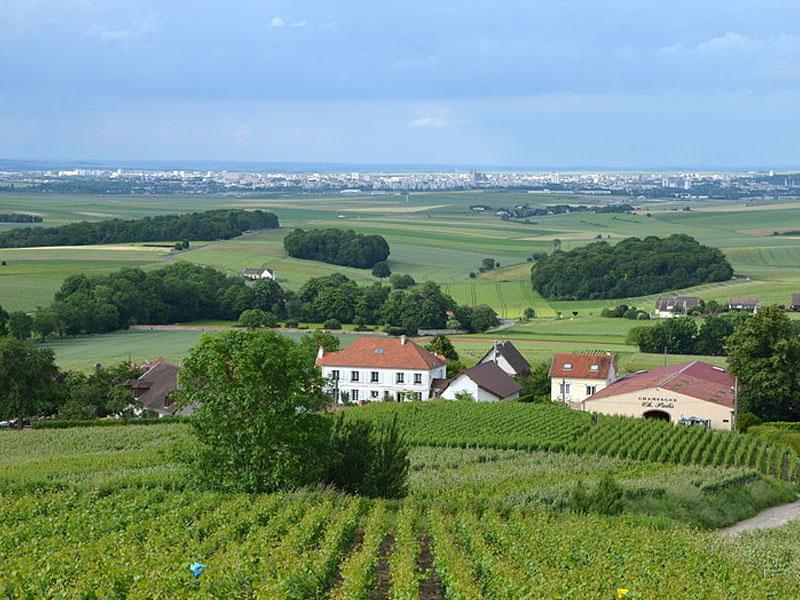 Melhores rotas do vinho da França