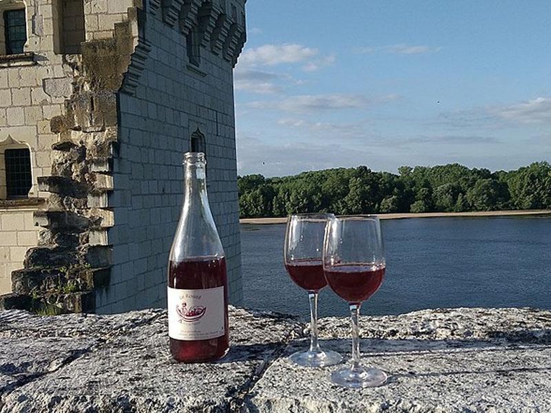 Passeios com vinho na França