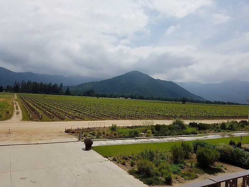 Visita às vinícolas em Valparaíso