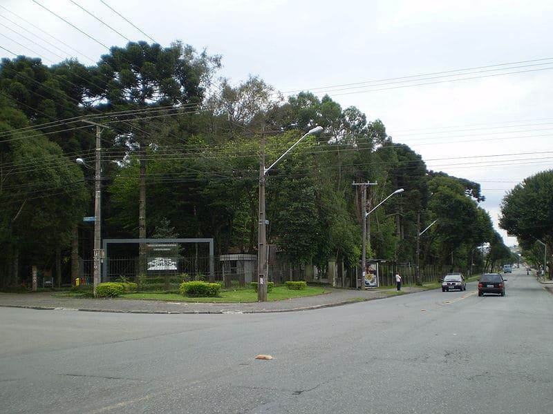 Bosque do Capão da Imbuia
