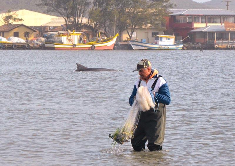 pontos turísticos de Laguna golfinhos