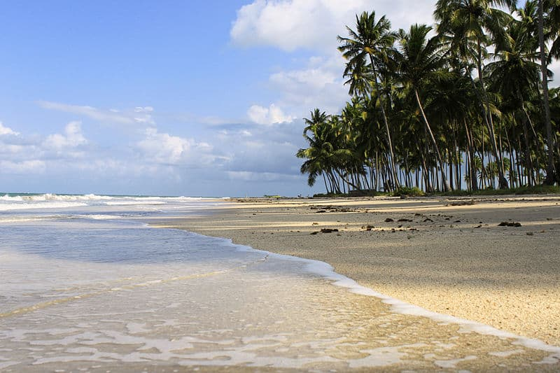 Passeios em Recife no mar