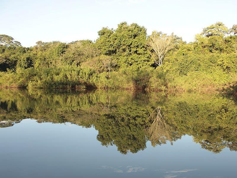 roteiro pelo pantanal