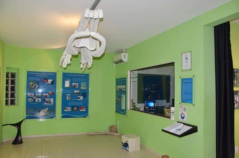 centro de pesquisa das Baleias Francas