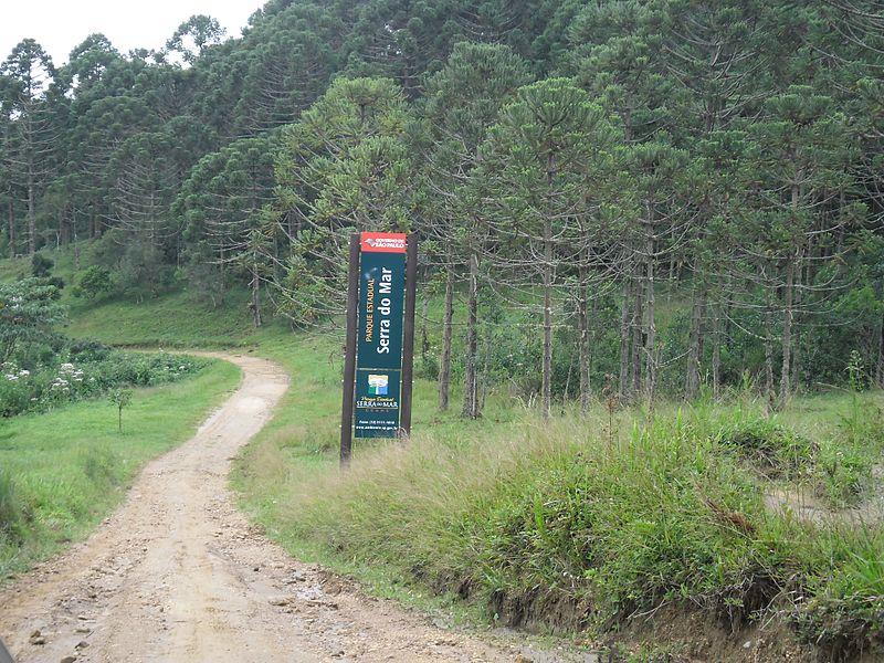 Arredores de Paraty: o que conhecer?
