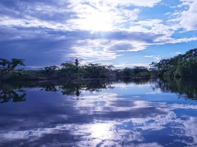 Países que fazem parte da Floresta Amzônica