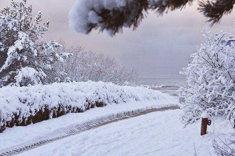 Inverno em vilnius