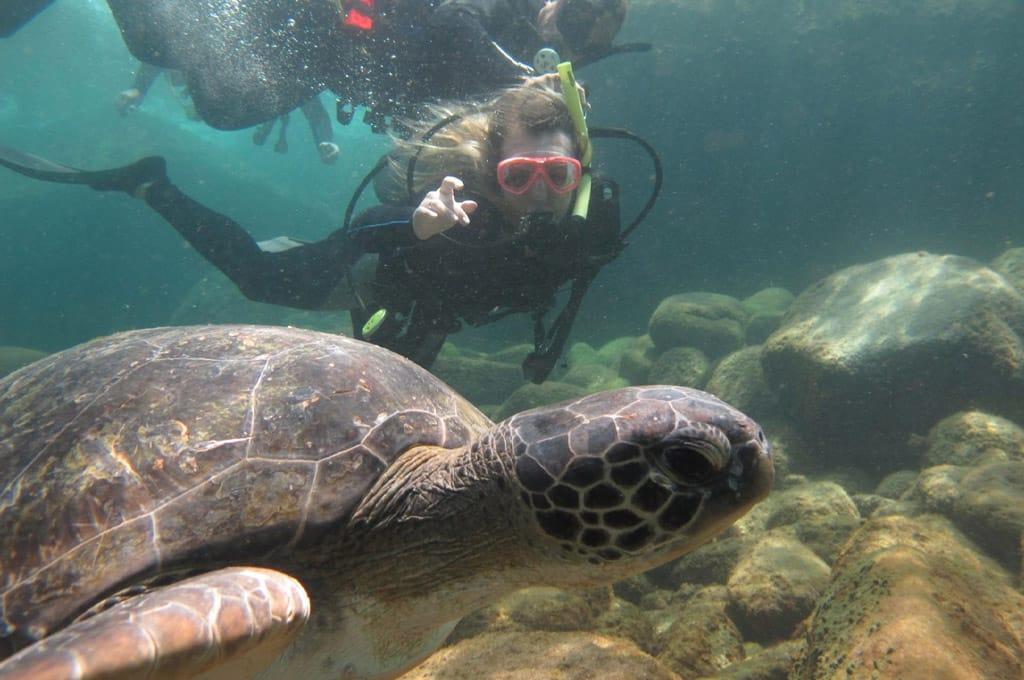 snorkel em florianopolis