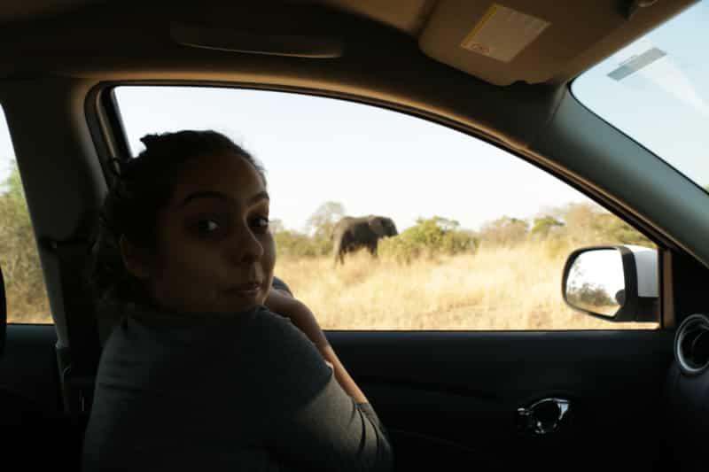 Self Drive no Kruger preço