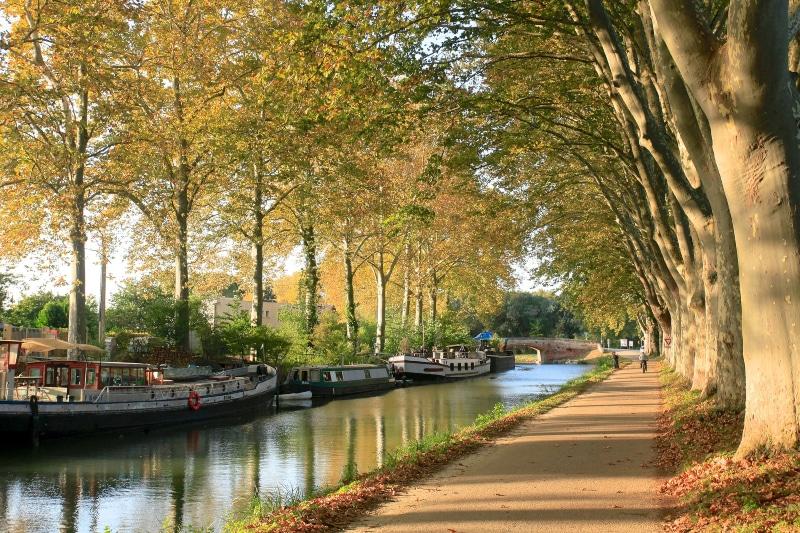Toulouse França