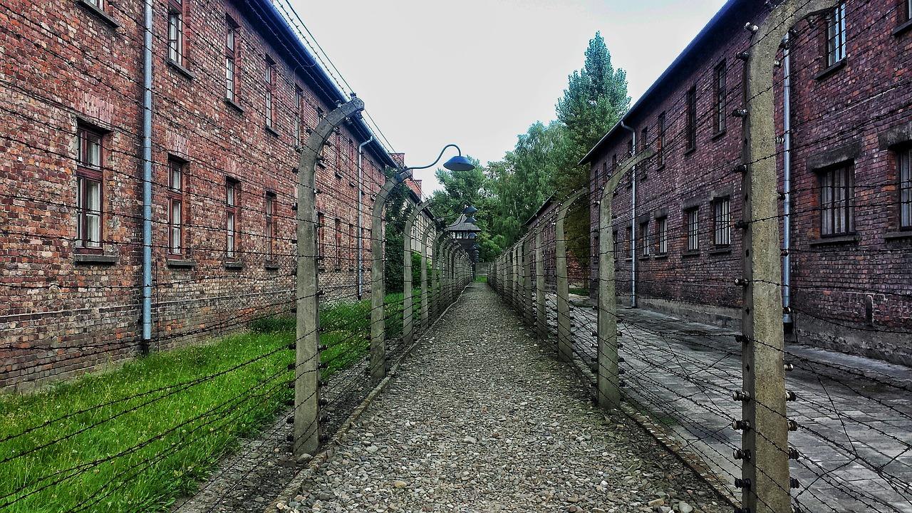 Auschwitz curiosidades