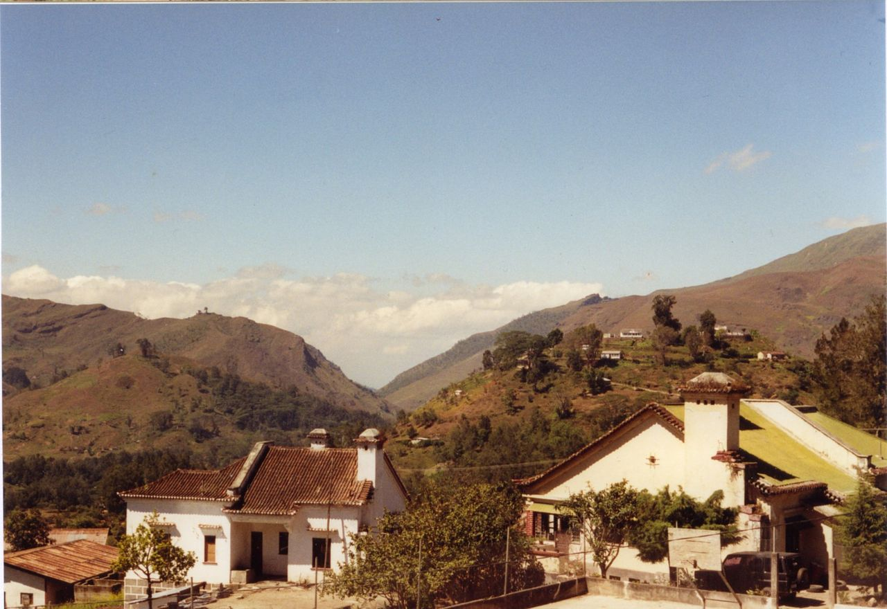 Timor-Lestemorangos