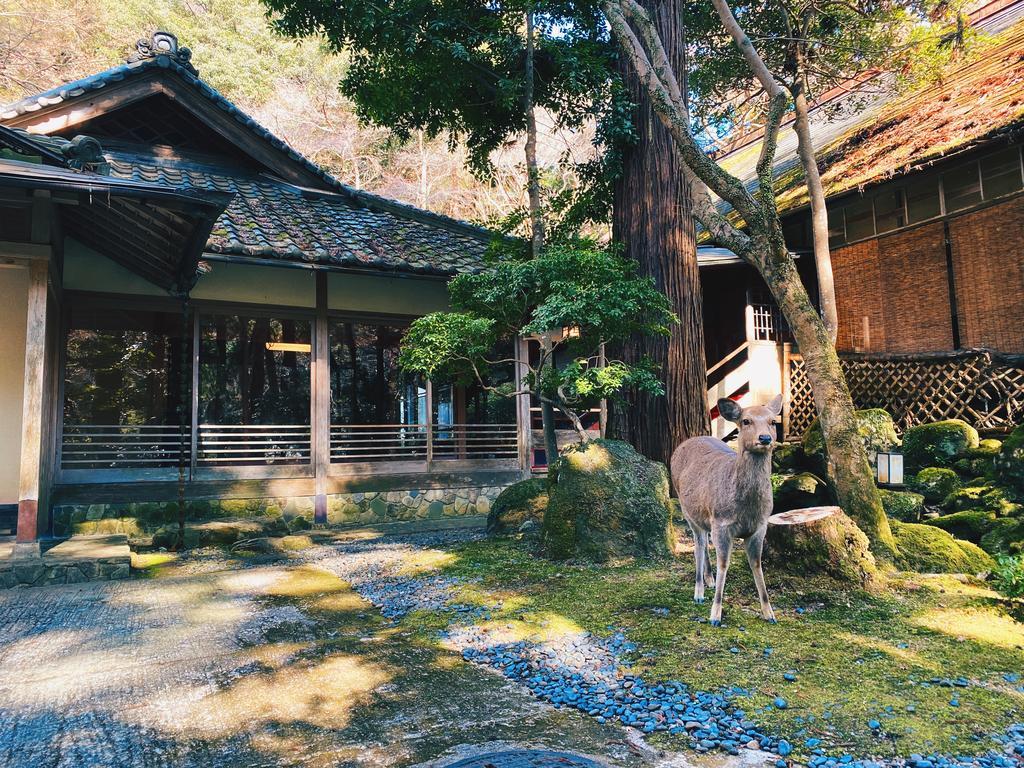 hotéis no Japão nara