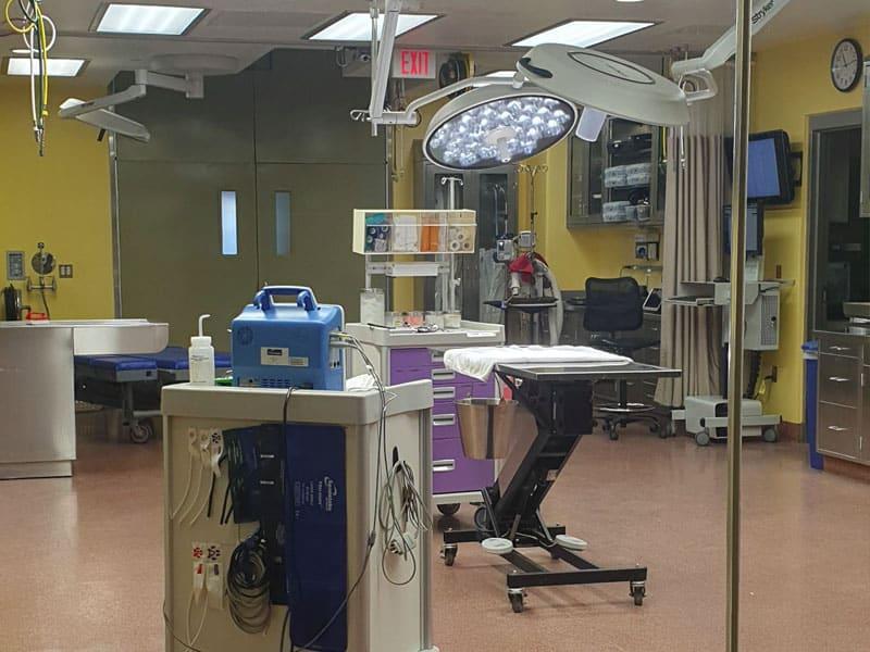 Hospital veterinário do Bush Gardens